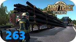 ETS2 Promods 2.45 | 263 | TransArt: Einmal nur ohne Umleitung | Scania R580 V8