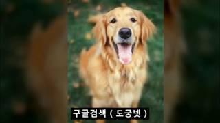 창업닷컴 창업닷컴주소 조여정 흥분녀