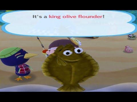 Giving An Animal A King Olive Flounder Animal Crossing Pocket Camp Youtube Her nle için anında hazır 4k ve hd video. giving an animal a king olive flounder animal crossing pocket camp