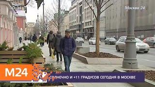 Смотреть видео Солнечная погода ожидается в столице 15 апреля - Москва 24 онлайн