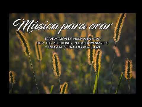 Mi deleite esta en ti Señor - Música cristiana instrumental / Música para orar