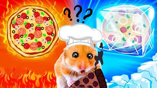 🍕Pizza Hot and Cold! Hamster escapes Amazing challenge Obstacle course😱 by Hamster Stories