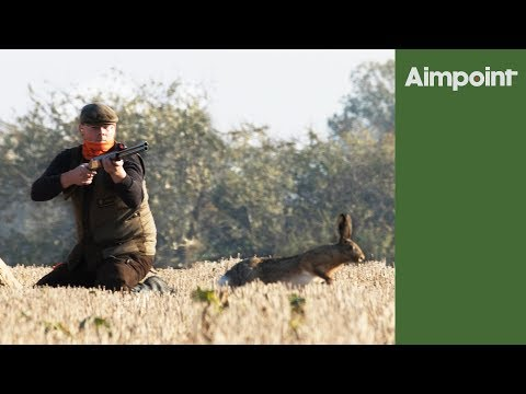 Hare shoot - massive pest control day