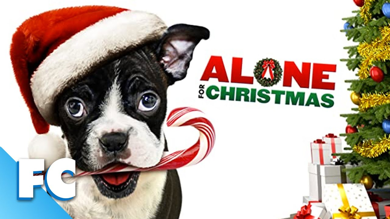 Download Alone For Christmas | Full Christmas Comedy Movie | Ft. Kevin Sorbo
