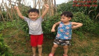 Chơi cùng con. Tung Chi cùng bố ra đồng chơi và khám phá cảnh vật xung quanh