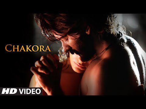Chakora Video Song - Mirzya
