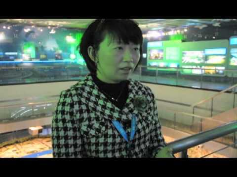 Shanghai Culture Dash