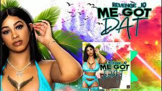 Revenge_iq - Me Got Dat [Audio Visualizer]