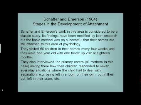 Stages in the Development of Attachment
