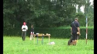 MPPT Lodz 22.08.2009 WIKI MAVIC (III)