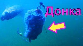 Ловил на донку. Подводная съемка, рыбалка онлайн. Ловля карася. Fishing(Ловил донкой (пружина с двумя крючками) и снимал под водой. На червя ловить сразу перестал, так как сразу..., 2016-01-02T16:50:01.000Z)