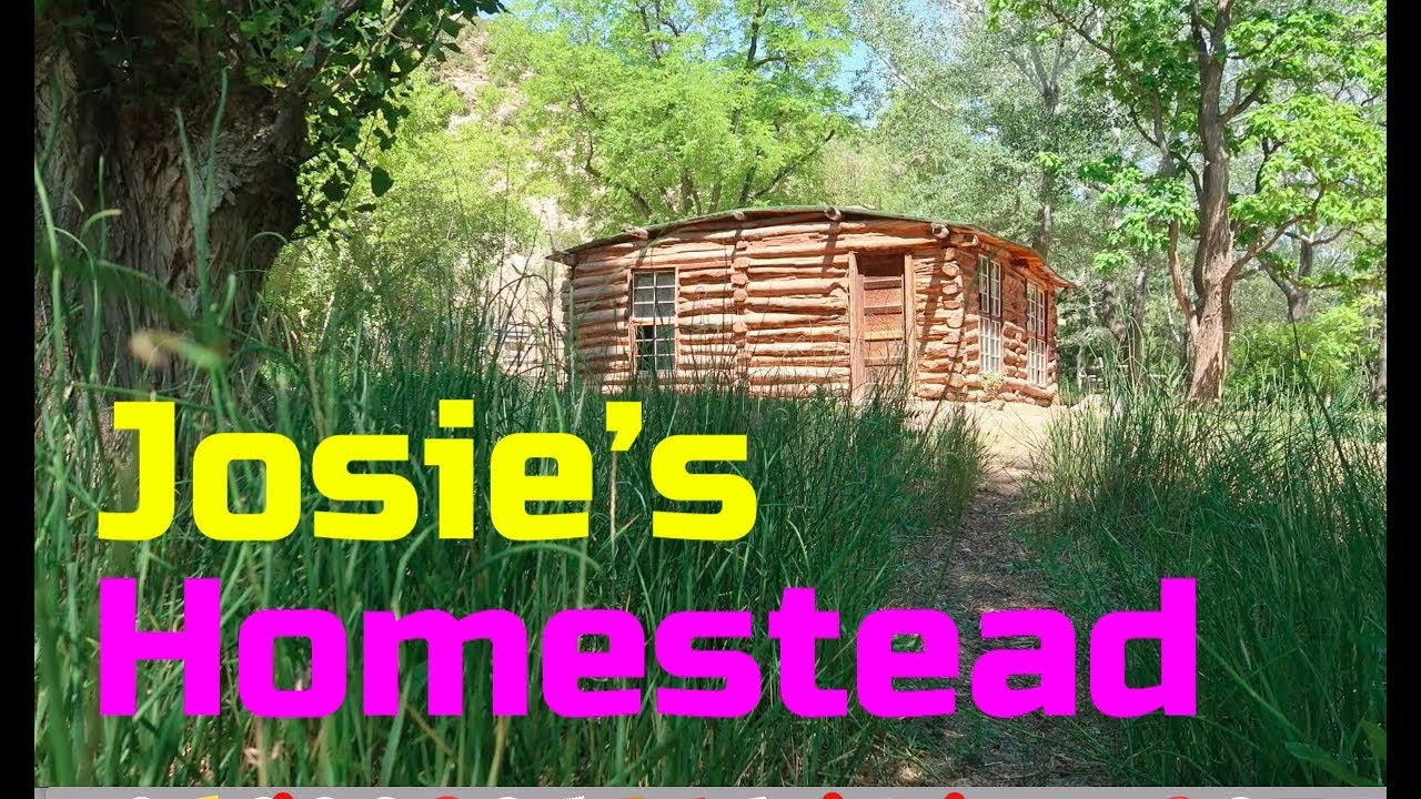 a-single-woman-created-a-self-sufficient-homestead