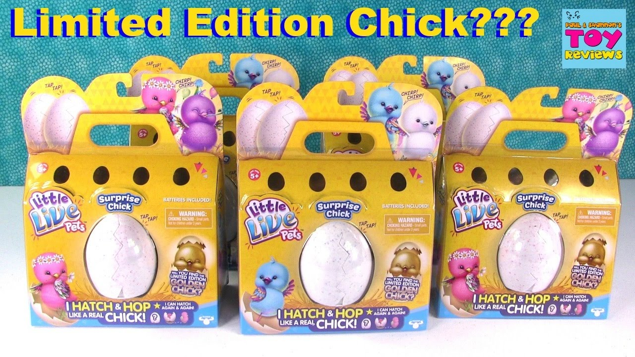 Surprise chick eggs little live pets opening limited edition collection pstoyreviews