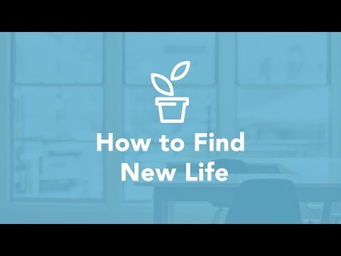 How to Find New Life - Bruce Downes The Catholic Guy