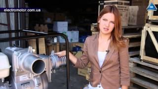 видео Купить мотопомпы для воды в Киеве