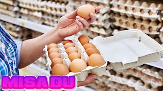 More than 200 million eggs are recalled over salmonella fears