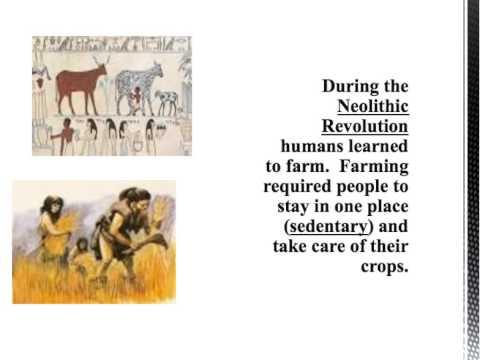Global History Review - Early Man and the Neolithic Revolution