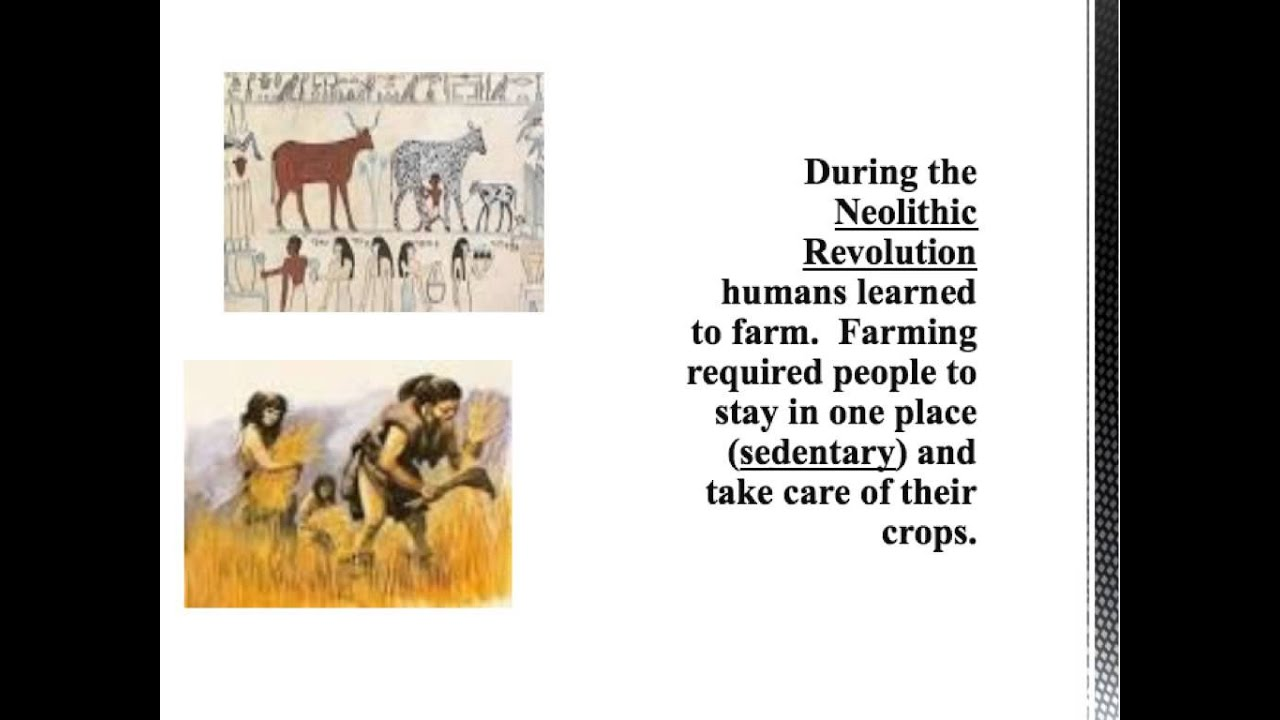 global history review early man and the neolithic revolution global history review early man and the neolithic revolution