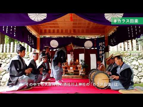 MIYAMOBIでめぐる秋のフォトツアー