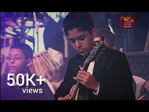 Royal college Susara '14 Mandolin solo