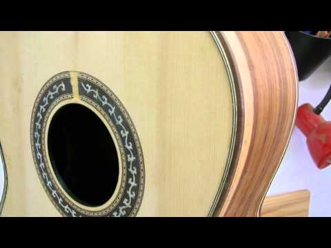Paco Chorobo - Guitarra PauFerro / Custom guitar PauFerro