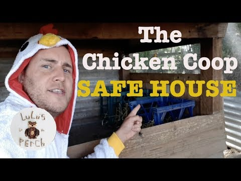 The Chicken Coop Safe House!