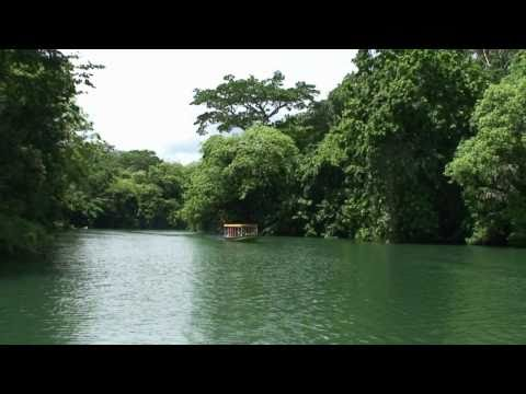 Jungle Land Panama Tour - HD Best Eco Day Tour on the Panama Canal