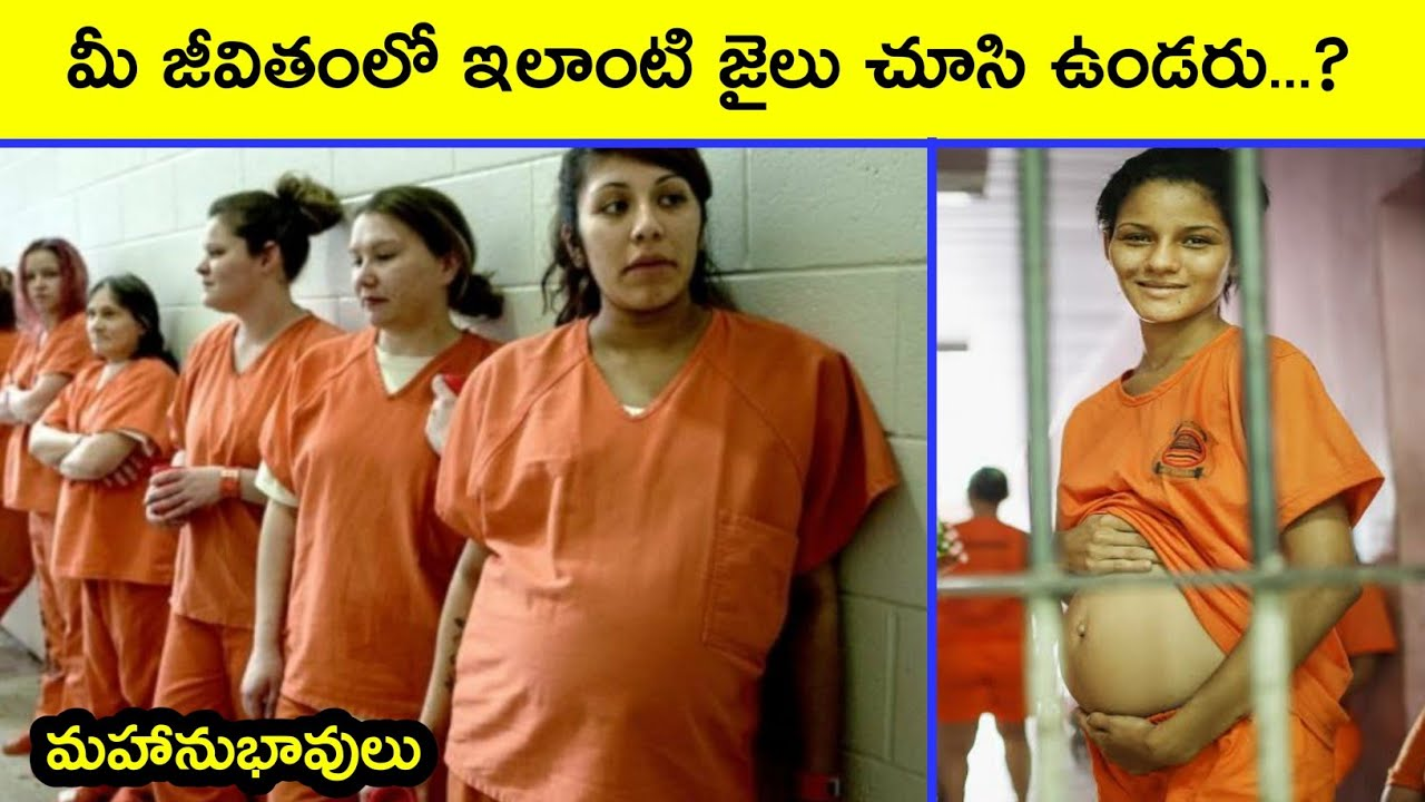 10 Most Luxurious Prisons in the World | Telugu Facts | Interesting Facts in Telugu