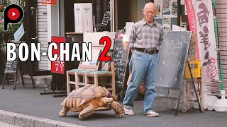 Bon-chan 2 : Next chapter | An old man and his giant tortoise take a walk