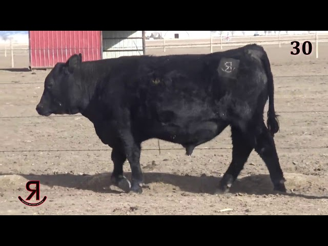 Reverse Rocking R Ranch Lot 30