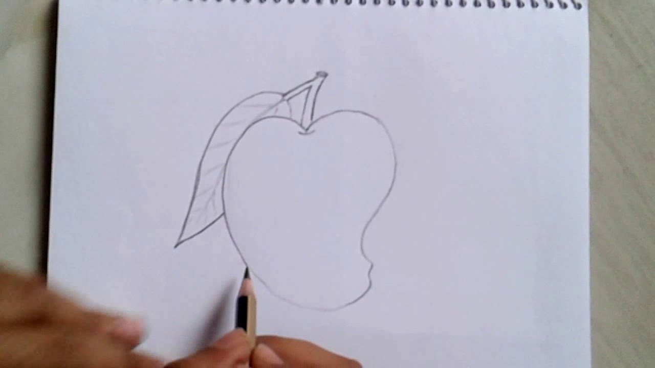 How To Draw A Mango Pencil Sketch Mango Art For Begenner Step By Step Youtube