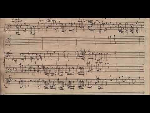 G. Ph. Telemann: Violin Concerto Bb major TWV 51:B1 [1719]