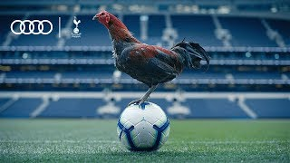 AUDI UK CHECK OUT SPURS NEW STADIUM