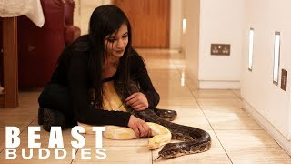 I Share My Bedroom With A 16ft Python  | BEAST BUDDIES
