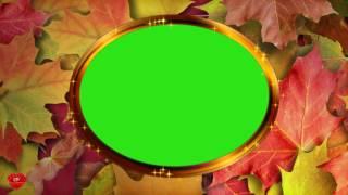 Футаж Рамка овальная хромакей с  осенними листьями