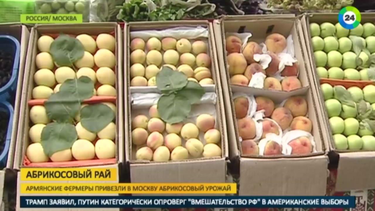 Где купить ягоды свежие cо скидкой до 50% в москве в сентябре 2018 года. Узнайте, где покупать дешевле и экономьте до 50% уже сегодня c едадил.