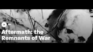 Aftermath | The Remnants of War | Violent Century