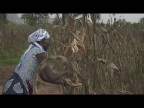 'It's Africa's Time' Season 3 - BP Angola Full Story