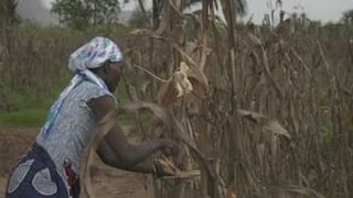 'It's Africa's Time' Season 3 - BP Angola Full Story