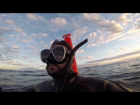 Thumbnail: Why This Diver Recorded His 'Final Hours' Adrift at Sea Before Being Rescue