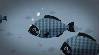 followfish - Gegen den Strom - nachhaltig fischen, Meere schützen