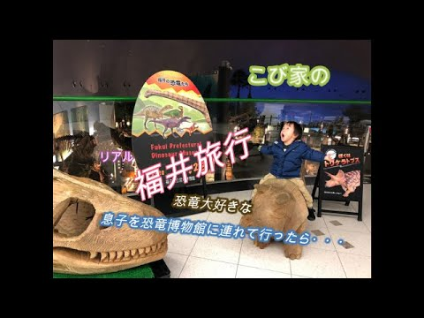 家族旅行 福井~恐竜博物館へ~ 恐竜大好き息子を連れて行ったら・・・