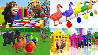 Learning Colors with Zoo Animals and Farm Animals For Kids!