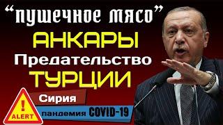 «Пушечное мясо» Анкары. Предательство Турции.