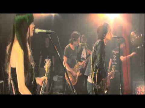 a flood of circle / シーガル -Live 【MUSIC VIDEO Short.】