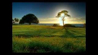 Alan Parsons Project - Ammonia Avenue..Subtitulado en Español