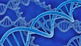 Hacking Cancer DNA Part 1