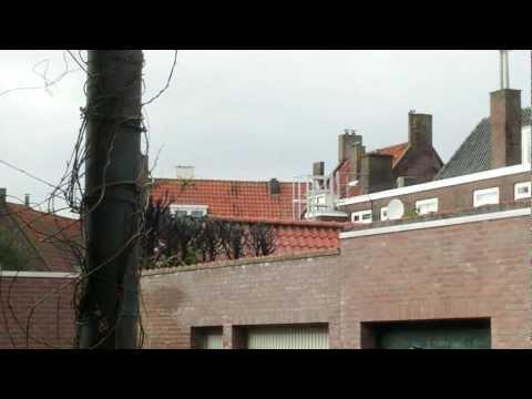 Boompjes in brand 22/2/2013 Hof van st. Jan - Middelburg