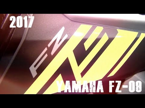 T-Rex Racing 2014-2017 FZ-09 Radiator Guard