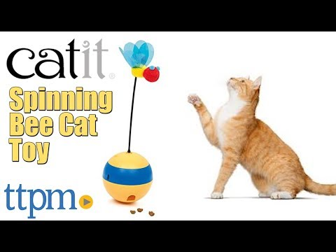 Spinning Bee Cat Toy from Catit